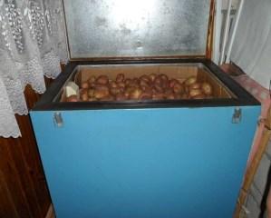 Хранение картофеля на балконе
