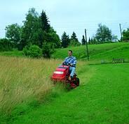 Уход за многолетними травами