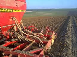 Обработка почвы перед посевом пшеницы