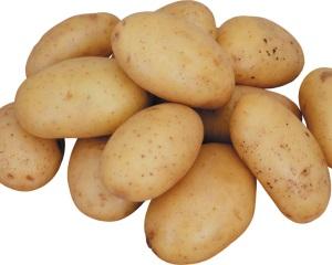 Картофель Венета
