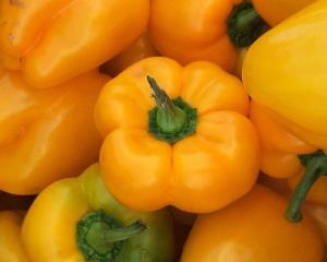 Сорта оранжевых перцев