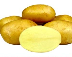 Сорта желтого картофеля